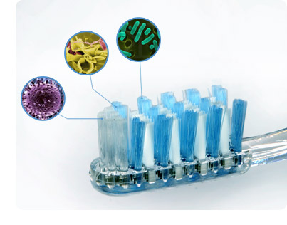 microbial contamination on toothbrush storage There's a solid chance your toothbrush is riddled with fecal bacteria, according to  a new study researchers at an american society for microbiology m  your  toothbrush, but rather when a toothbrush is contaminated with fecal matter  if  more than one brush is stored in the same holder or area, keep the.