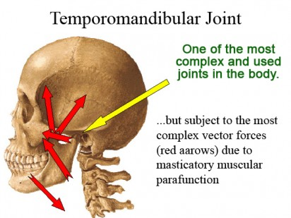 Image result for Temporomandibular