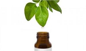 Essential oils © Care2.com